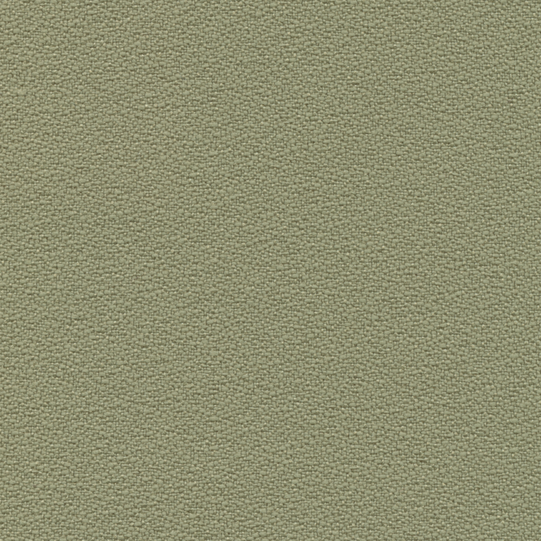 Eucalyptus Guilford Of Maine